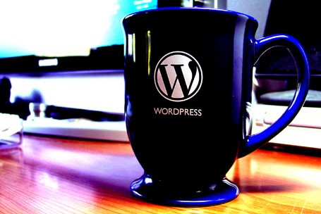wordpress-plagiarism