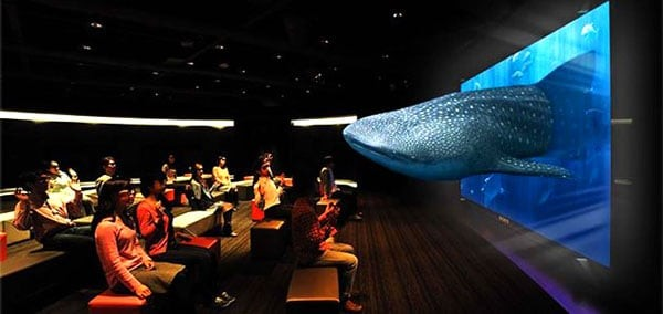 sony 3d projector