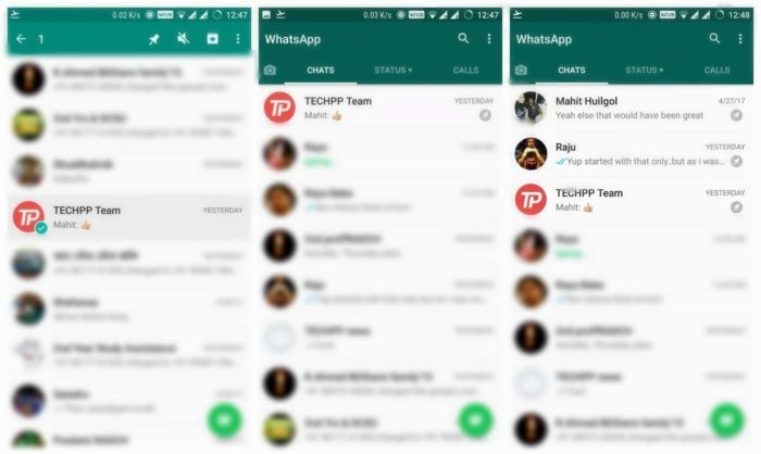 WhatsApp Chat Pin Feature