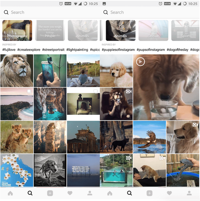 Instagram's new Beta Update Curates Explore Page's Content into Various Categories