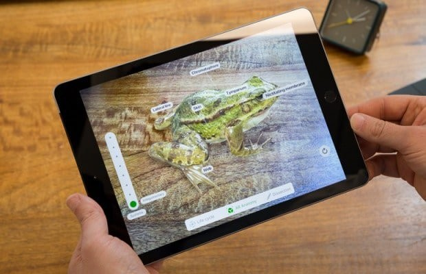 Indian app Froggipedia is Apple's iPad App of the Year