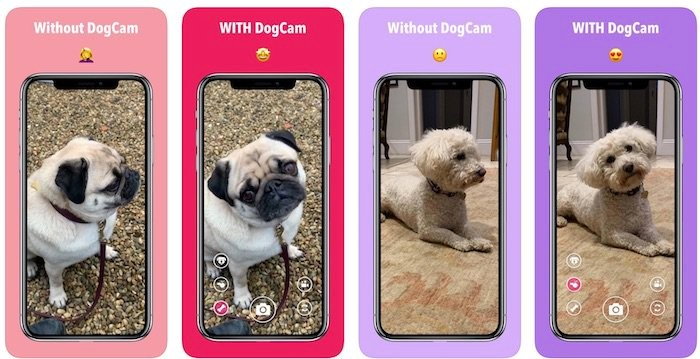 [Appsolutely] Seeking those perfect pup shots? There's an app for that!