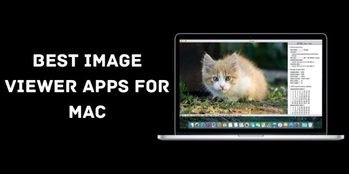 Best Image Viewer Apps for Mac