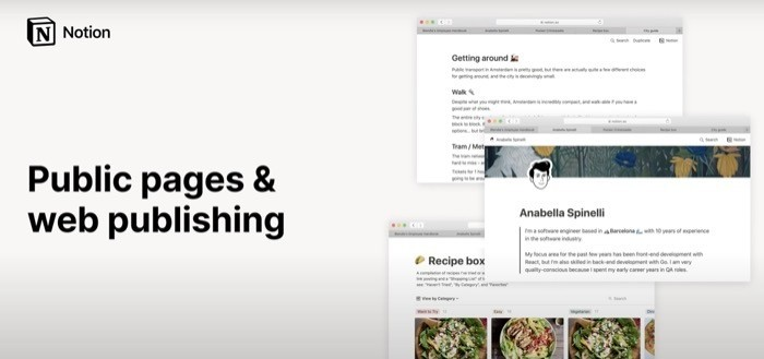 Notion public pages and web publishing